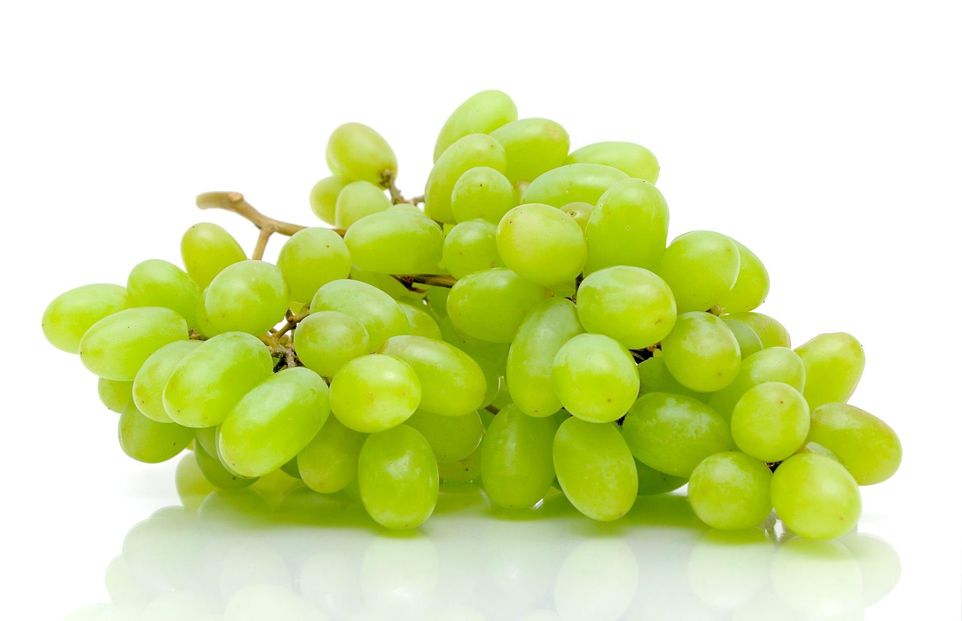 Weintrauben - Alles über die Weintrauben